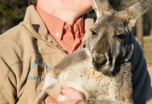 Patrick Starr holding a kangaroo